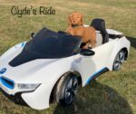Clyde's Ride